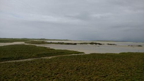 Tidal area