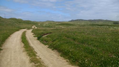 Dune track