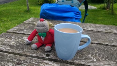 Monkey with Tea